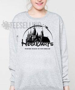 Harry Potter Hogwarts Unisex adult sweatshirts