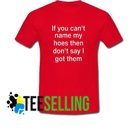 if you can't name my hoes then don't say i got them T-shirt Adult Unisex